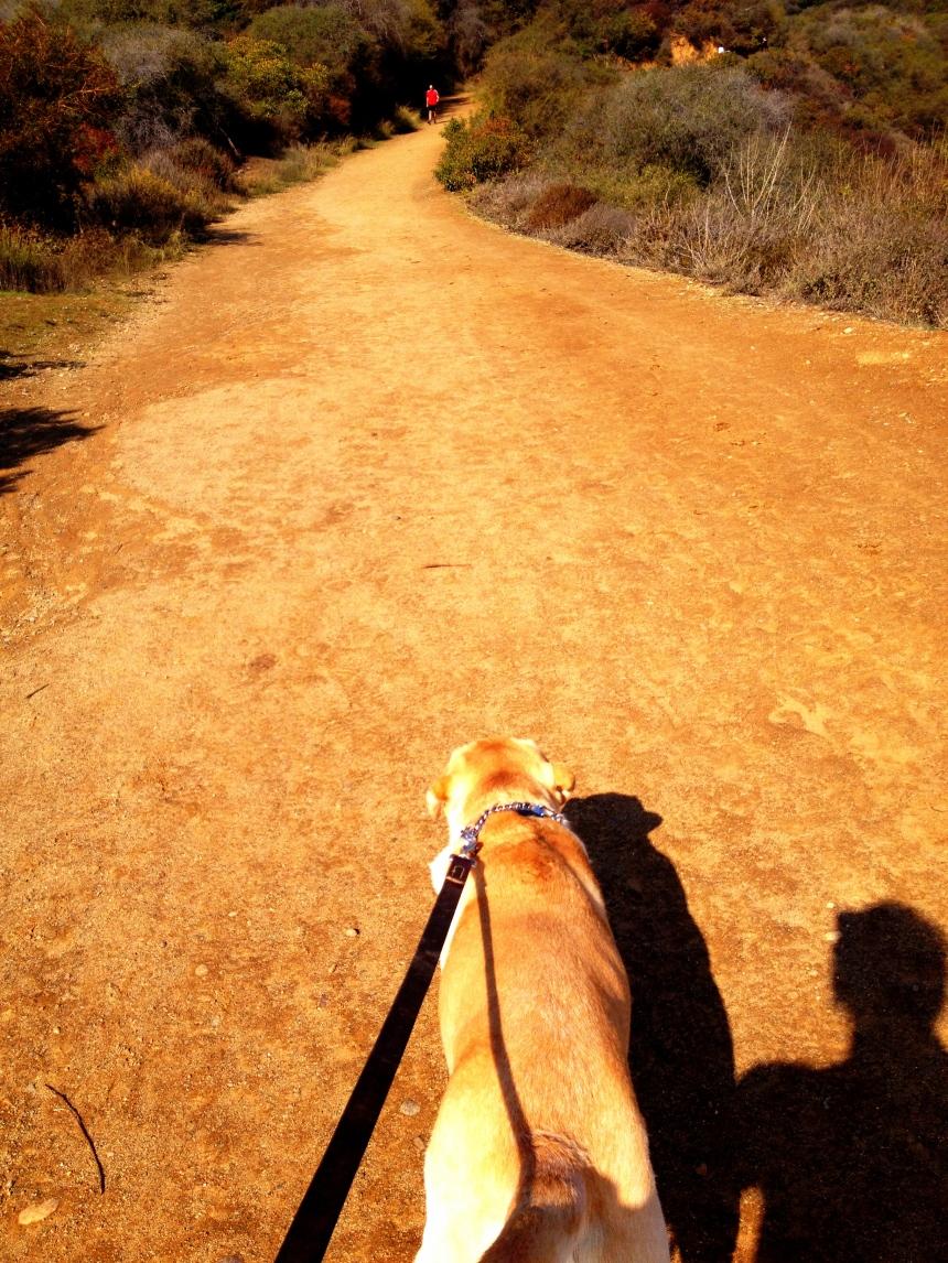 Walking me.